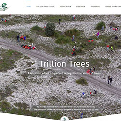 Trillion Trees WA